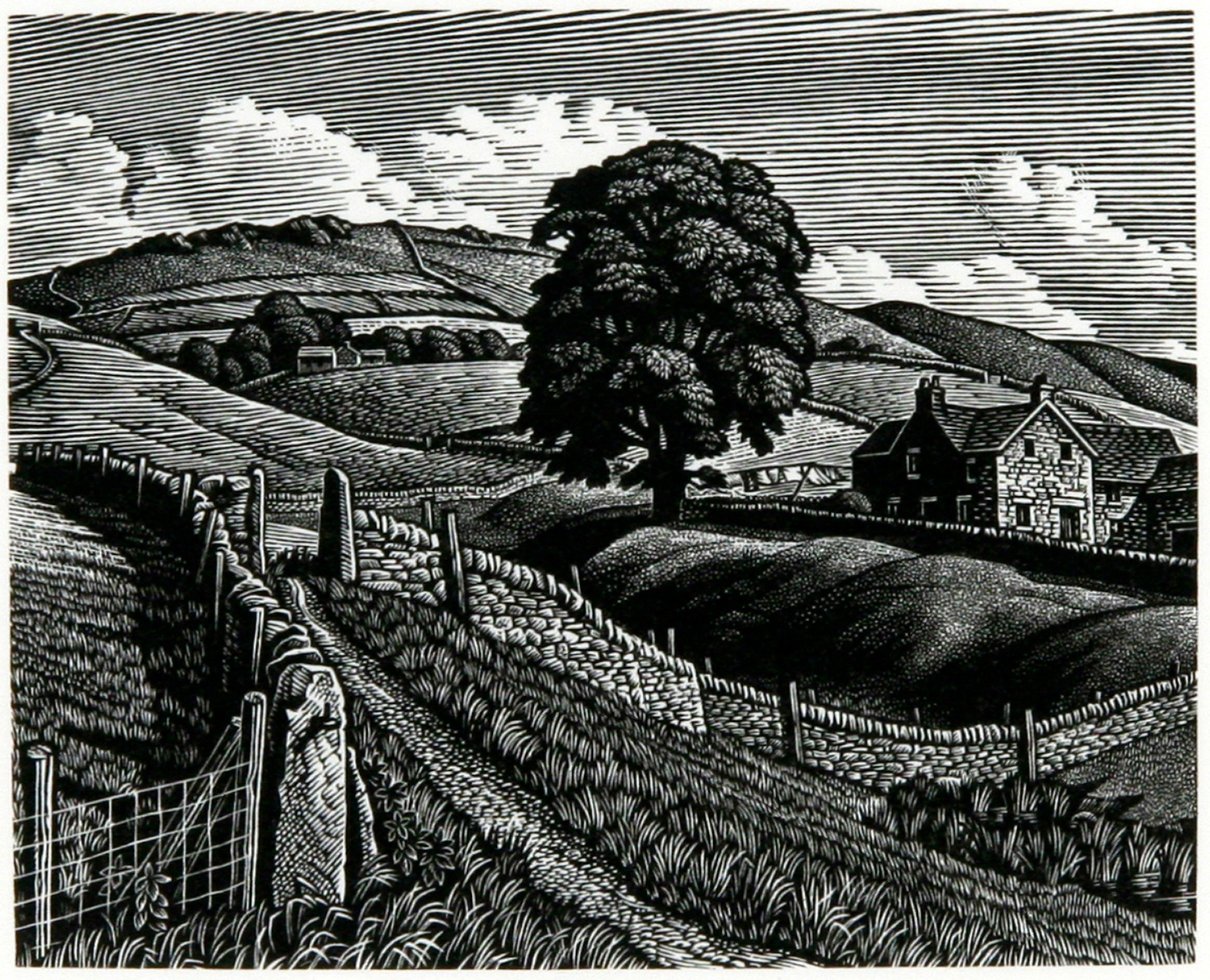 Saltersford, A Moorland Farm by Howard Phipps