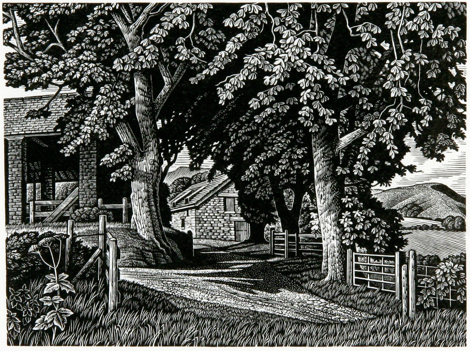 Hill Farm by Howard Phipps