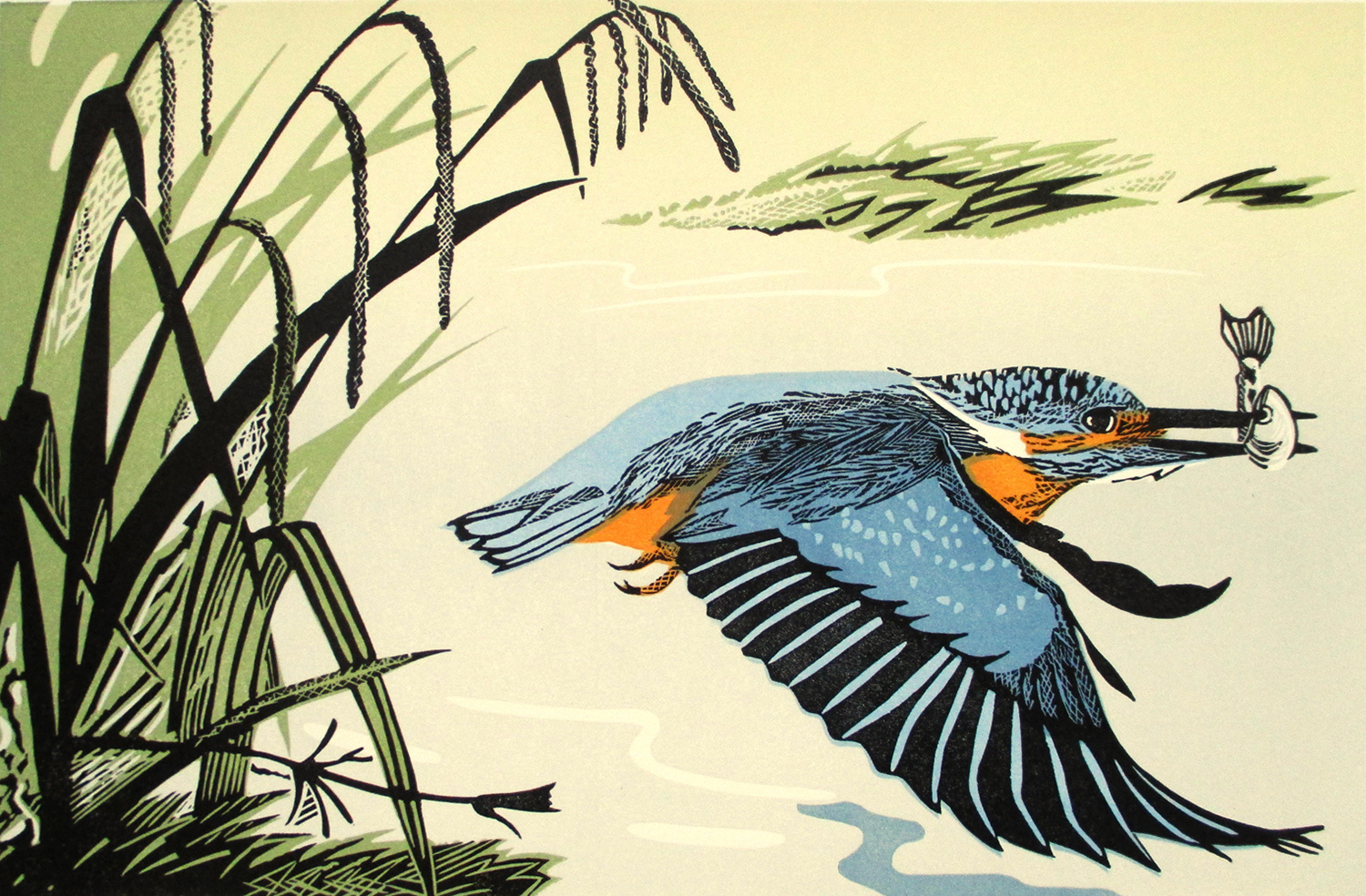Kingfisher by Pam Grimmond