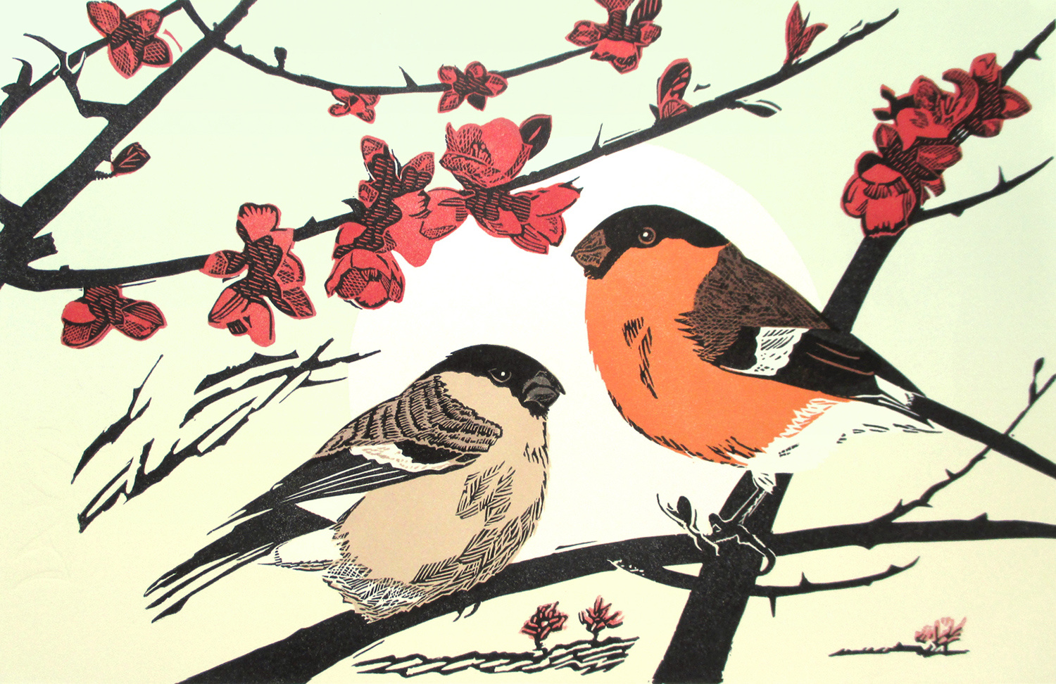 Bullfinches by Pam Grimmond