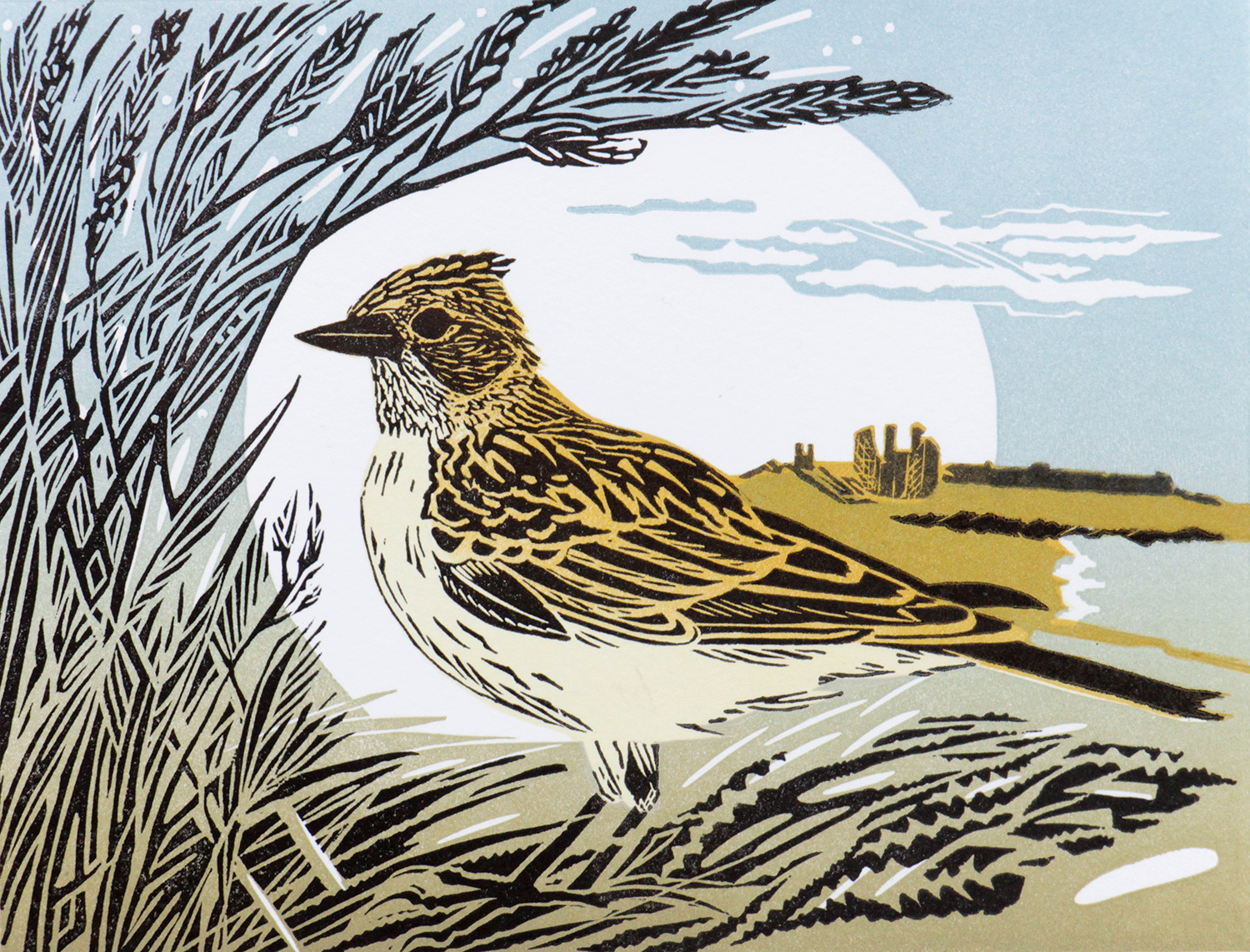 Skylark by Pam Grimmond
