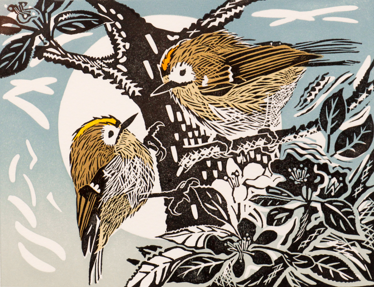 Goldcrests by Pam Grimmond