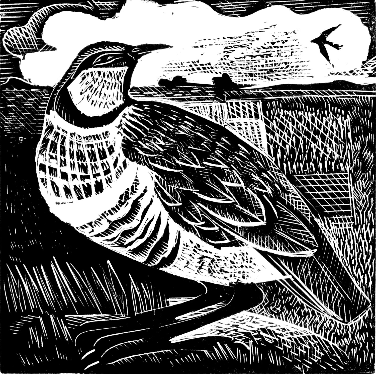 P is for Partridge by Angela Harding