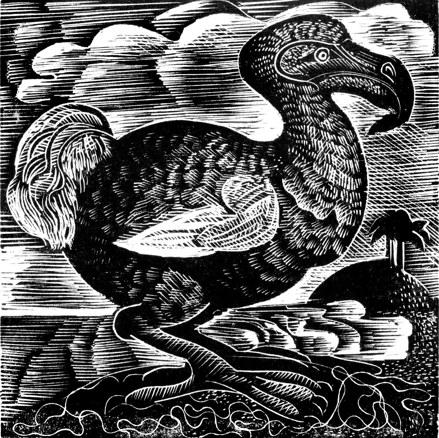 X is for Dodo by Angela Harding