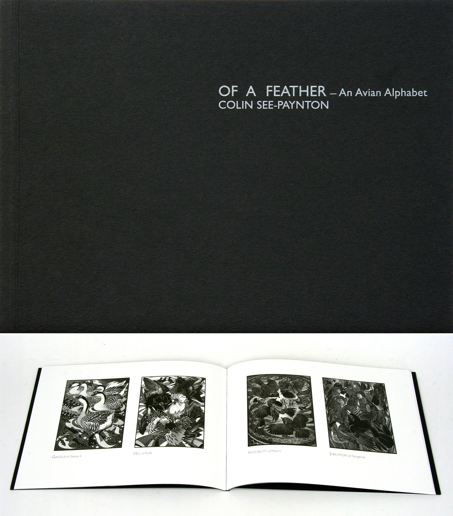 Of a Feather by Colin See-Paynton