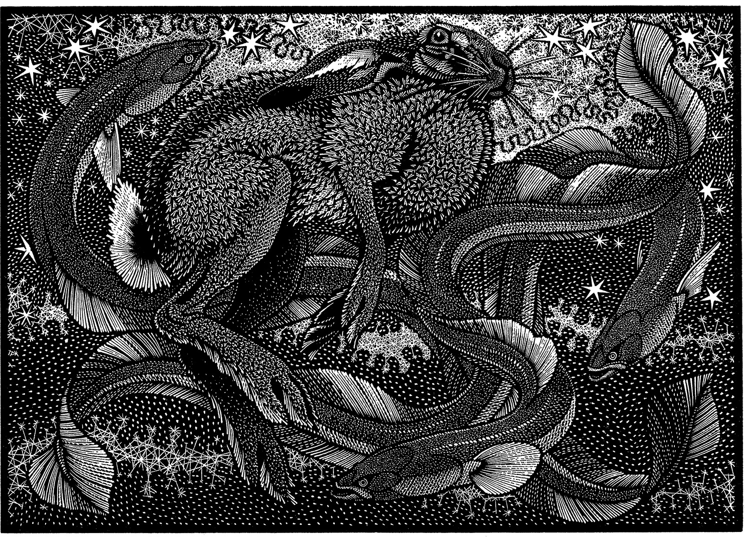 Nocturnal Encounters-Hare and Eels by Colin See-Paynton