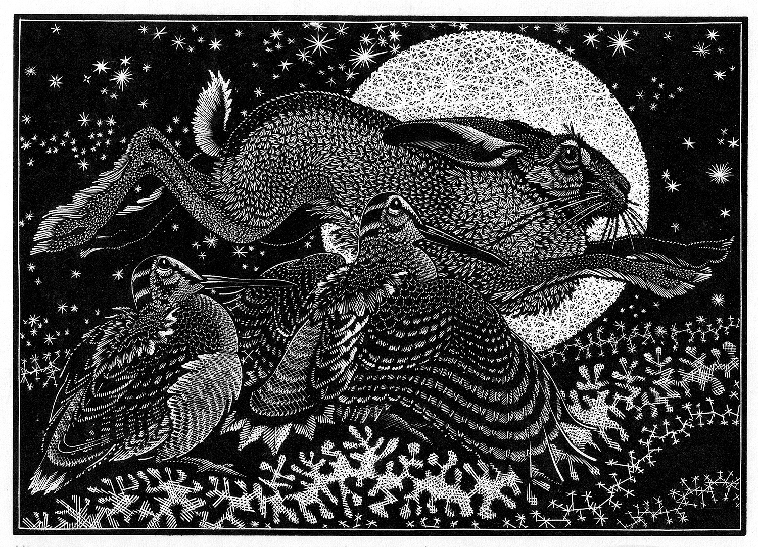 Nocturnal Encounters-Hare and Woodcocks by Colin See-Paynton