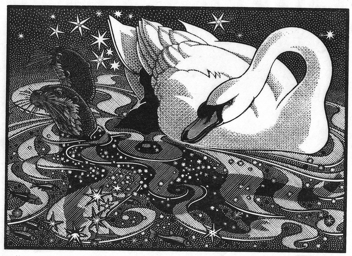 Nocturnal Encounters-Swan and Otters by Colin See-Paynton