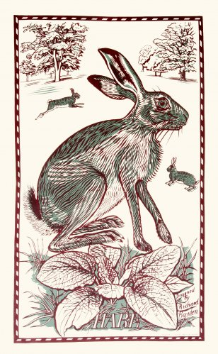 Tea Towel Hare