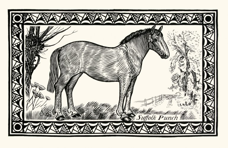 Tea Towel Horse