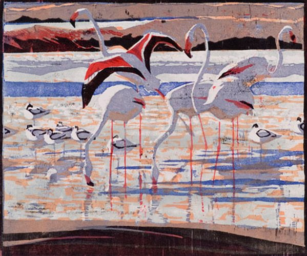 Flamingos & Avocets