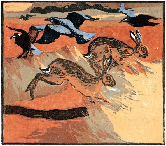 Hares & Rooks