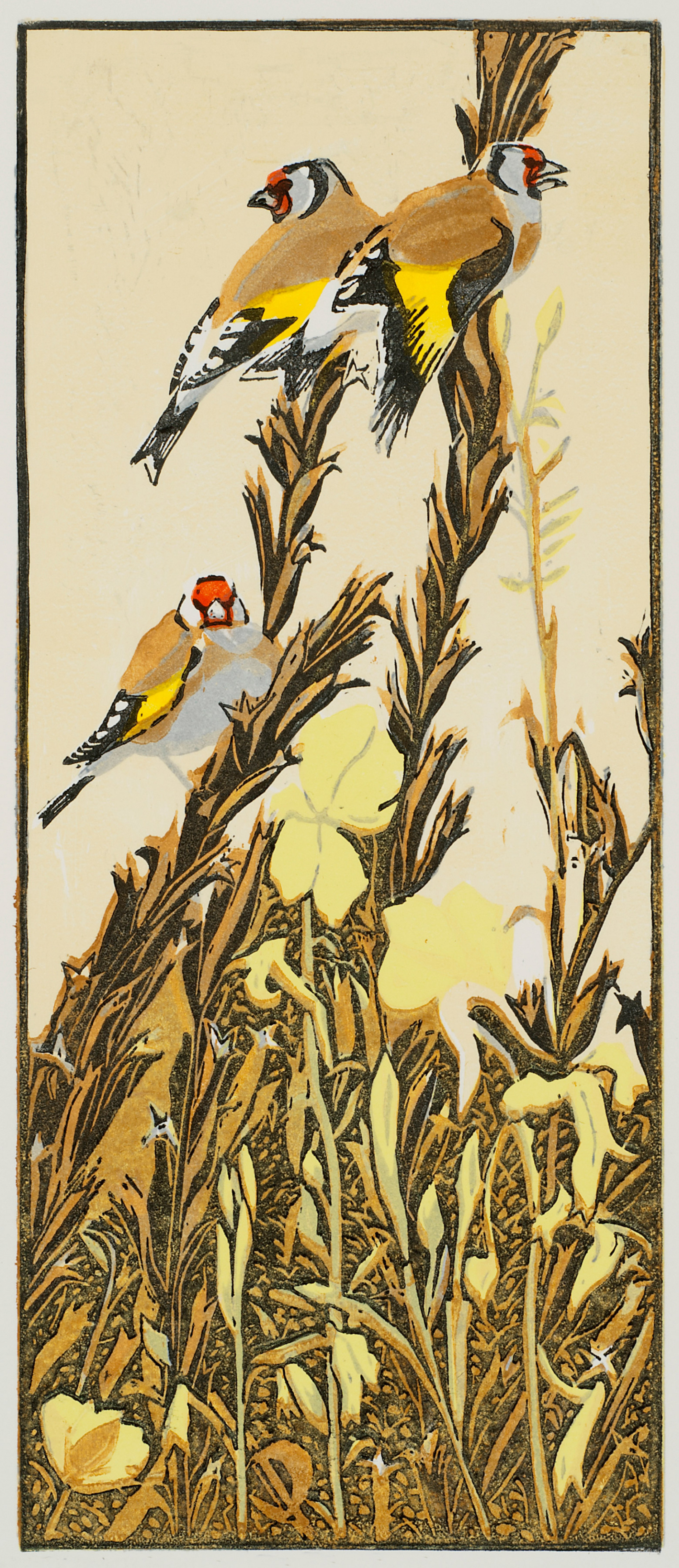 Goldfinches & Evening Primroses by Robert Greenhalf