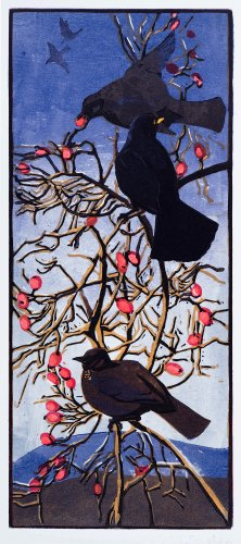 Blackbirds & Rosehips
